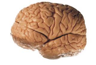 Daha az beyin felci (Amyotrofik lateral skleroz)