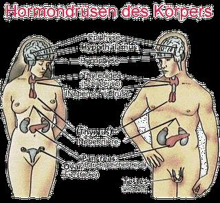Hormonlarla ilgili konular