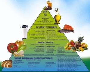 Beslenme nedir?